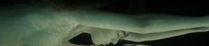 Screen Shot 2014-05-27 at 4.11.42 PM