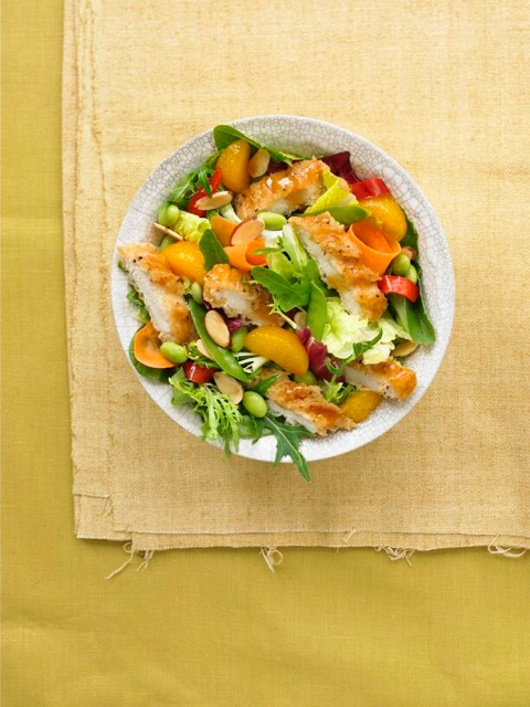 Shot of Asian Chicken Salad for MdDonald's Simple Bold shot back in 2008. It was great that we were shooting their food in props such as these. They helped tell the story of the food and helped showcase the quality of the food.